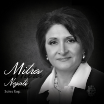 Agents - Mitra-Nejati.png